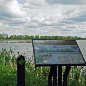 Informatiebord natuurgebied Willeskop