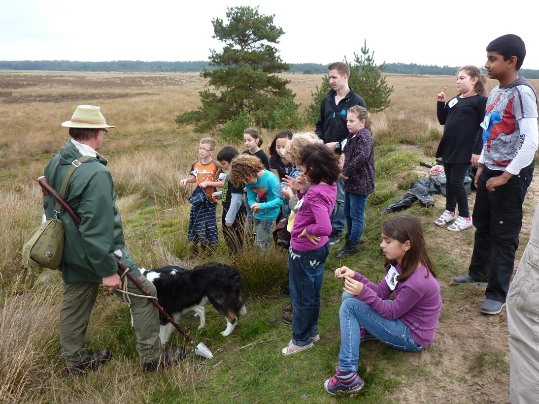 Kinderen op de heide met de herder
