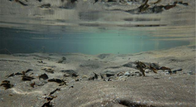 onder water in de spreng