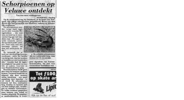 Artikel uit een oude Telegraaf over een gevaarlijke schorpioen op het Kootwijkerzand. Op de foto zie je een zandoorworm.
