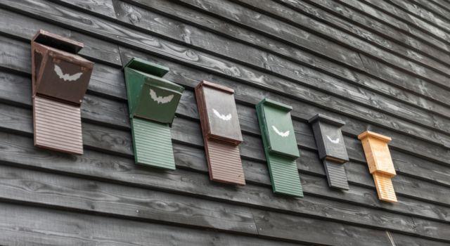 verschillende vleermuiskasten aan een muur