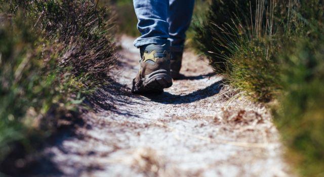 paden zonder asfalt