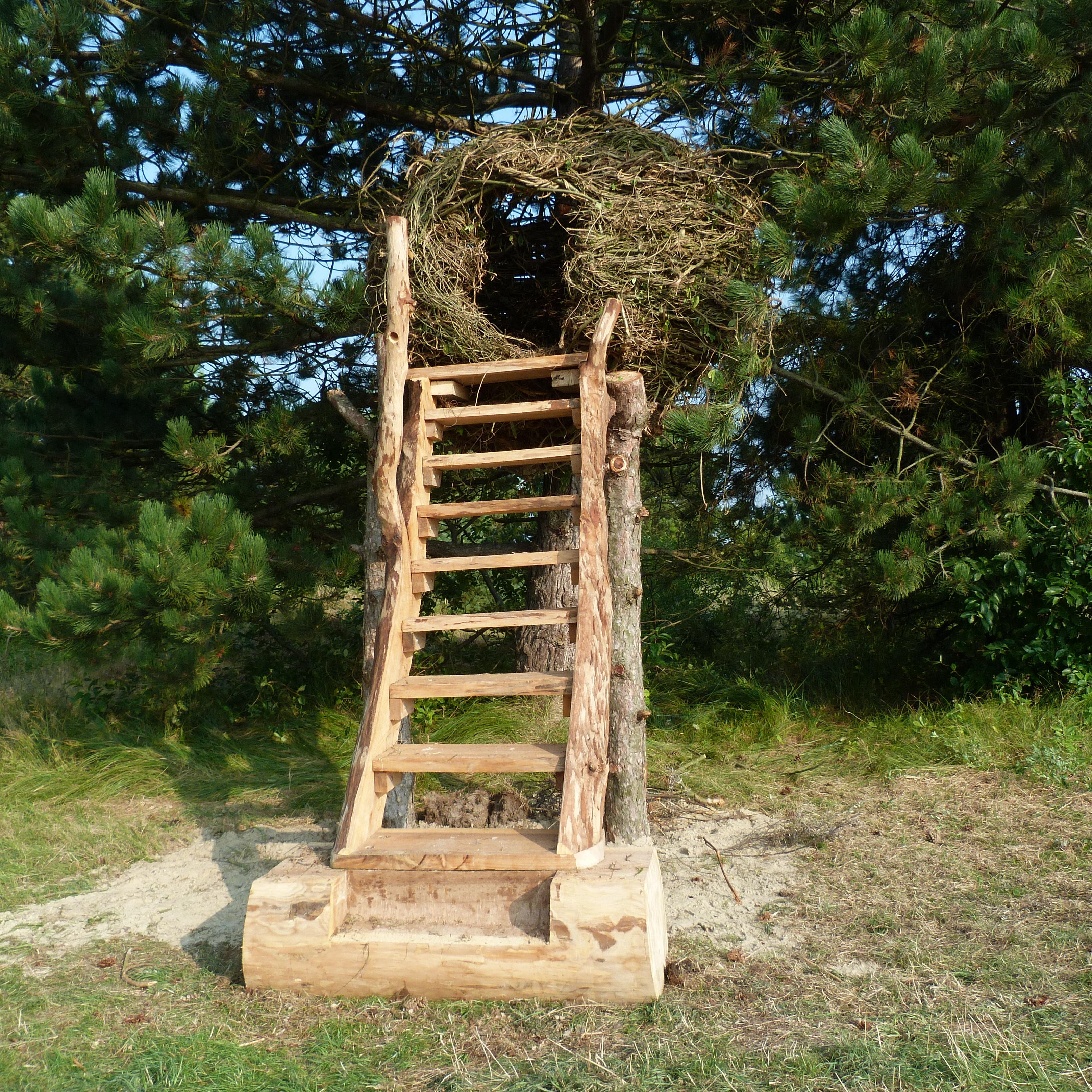 Het nest van Pieter is klaar #nesty !