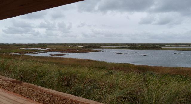 doorkijk-rietscherm-4e-polder