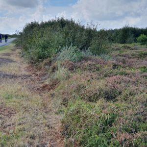 maaien berm Postweg 2020