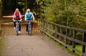 fietsers in haagse bos