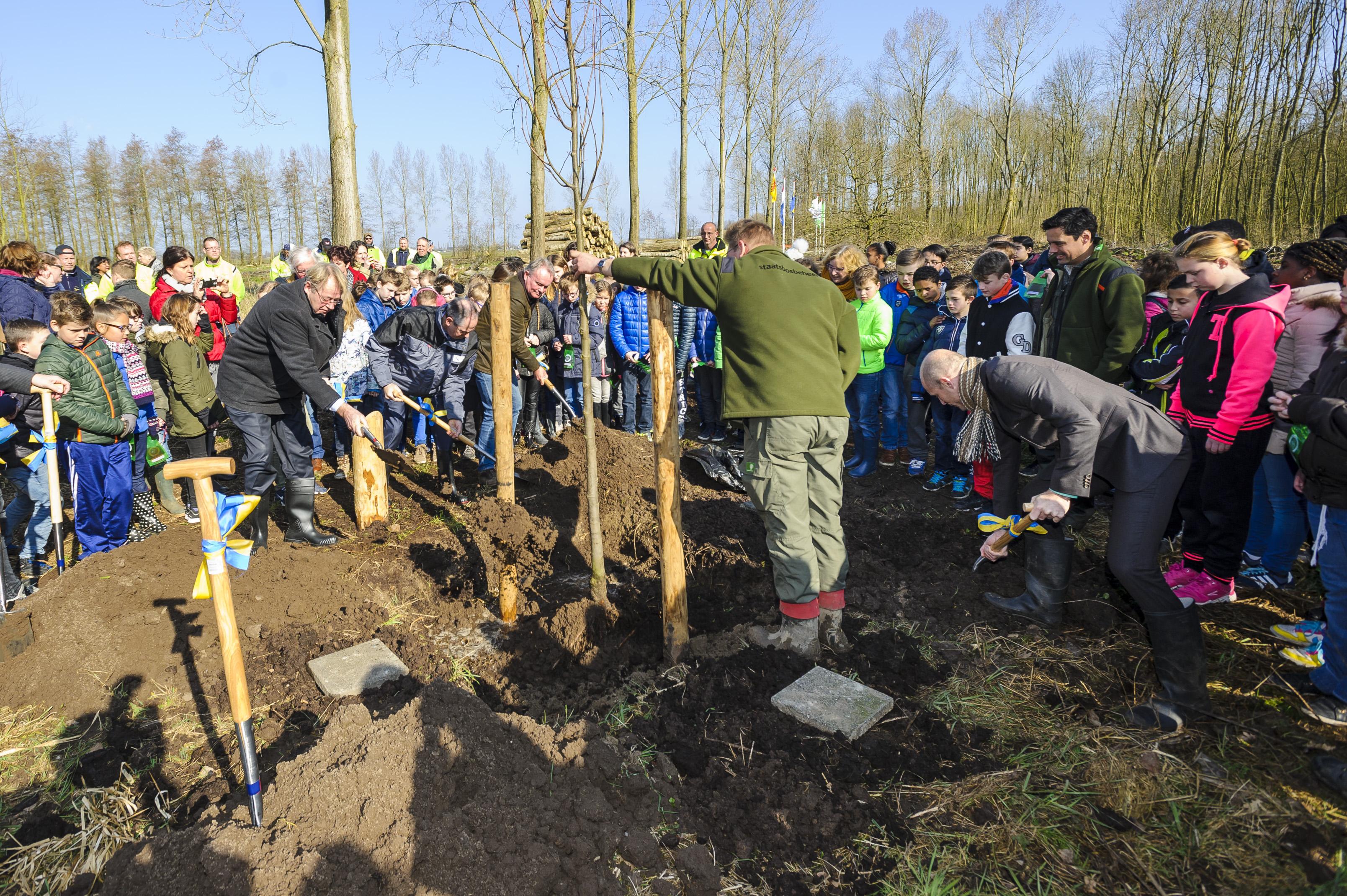 Boomplantdag, Gemeente Papendrecht