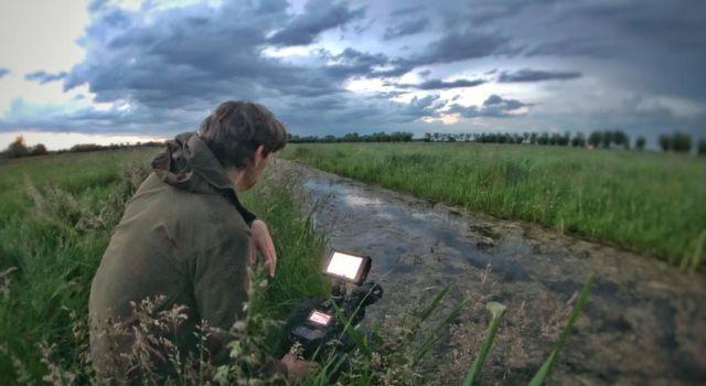 Natuurfilmer in de Alblasserwaard